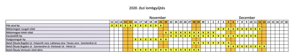 2020 oszi lombgyujtes